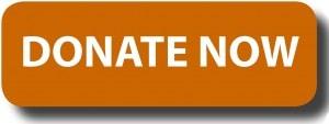 donate-button-logo-blue-rectangle12-300x113