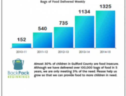 Bags of Food Delivered by Year